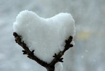 Winter Wonderland / by jane iredale Benelux - France
