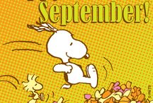 Fall / by Snoopy