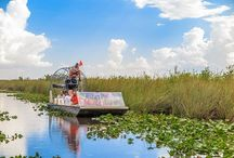Everglades Airboat Tours / Have the chance to experience the real Florida Everglades through airboat rides offered by Jungle Erv's! Jungle Erv's Everglade Airboat Tours is one of the original airboat tours in the Florida Everglades, with Jungle Erv's family dating back to the 1800s. A Native Son, Jungle Erv is renowned as the King of the Everglades until today.
