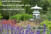 Homage for Miyamoto Musashi / Photo images combined with haiku poetry as a supplement to my book Homage for Miyamoto Musashi - 122 Haiku. Image copyright: Peggy Thompson http://homage-for-musashi.weebly.com/ The DVD is now available at Amazon.