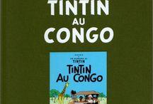 Tintin Collection Archives / Les Archives Tintin  Résumé de la série : Un véritable mythe ! Hergé a donné naissance, avec Tintin, à toute la bande dessinée actuelle. L'évolution du personnage, sur les 50 ans de parution, est passionnante.Cette édition de prestige réunit pour la première fois et en un seul ouvrage, les albums de Tintin accompagnés d'archives inédites. Ces livres ont été imprimé sur un papier de qualité édition avec une couverture toilée marquée à chaud du nom de l'auteur Hergé.