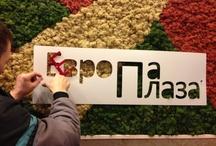 Europa Plaza Ucraina