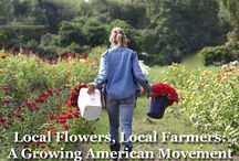 "Local Flowers, Local Farmers: A Growing American Movement / The Association of Specialty Cut Flower Growers proudly presents the debut of its documentary ""Local Flowers, Local Farmers: A Growing American Movement."" https://youtu.be/PEXs9UUgqqg"