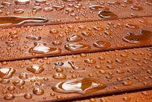 Waterproof wood