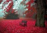 Autumn | Harvest