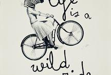 Walk the Wild Side