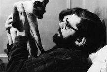 Кот и борода