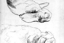 Bunnies, oh my. / by Ellen Bellenot