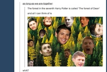 Harry Potter / Anything to do with the Harry Potter world