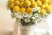 Yellow Weddings / A selection of centerpieces, bridal bouquet, wedding invitations, wedding cakes etc in yellow