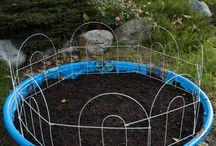 Garden liam