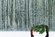 Holiday&Winter