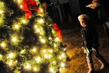 Cajun Christmas / Lake Charles/Southwest Louisiana knows how to get in the Christmas spirit.  / by Visit Lake Charles
