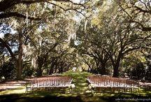 My Perfect Fairytale Wedding