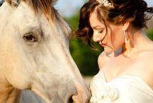 Weddings / Spectacular Wedding Venue in the Drakensberg near Giants Castle overlooking the Natal Midlands