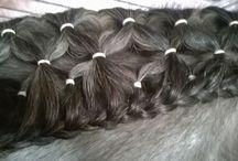 Horse Hair Styles