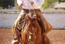 Jaquima de Freno Horse