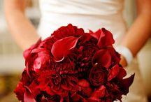 Weddings- Romantic Red