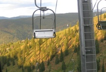 Hotel Aspen - Fall Foliage in Aspen / Regardless of the season, there are always diverting activities and incredible natural scenery to experience that will keep you coming back to Aspen from winter to summer and everywhere in between. When the fall color comes to Colorado each autumn, aspen trees put on a colorful show for guests to enjoy season after season. Experience Aspen.