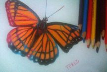 Colored Pencils / Colored Pencils Ilustrations