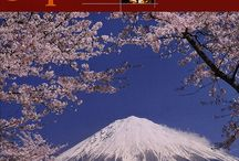 Japan/ 日本国 / The Collection has more than 860 publications about Japan.