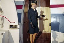 Flight Attendant / air travel