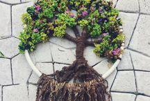 丸にツリー(木)