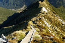 NZ walking tracks