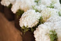 Wedding Flowers / by Katleen Armbruster
