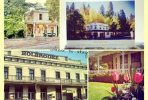 Plan your Nevada County Vacation! / Planning a vacation to Nevada City? Here are a few of our suggestions on place you might like to stay, visit, eat and play!