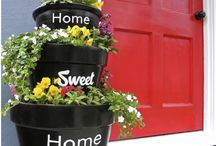 Curb Appeal / by Ashley Regier