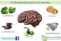 5 aliment pour cerveau
