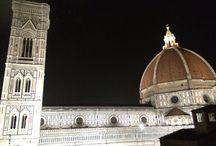 Florence oftewel Firenze / Florence deze stad is een Eldorado voor de kunst en musea liefhebbers. Maar ook als je van winkelen houdt zijn er mogelijkheden genoeg. alles is goed lopend te doen. Florence is ook de hoofstad van Toscane.  Als je alle bezienswaardigheden wilt bezoeken moet je er zeker een dag of 5 voor uittrekken.