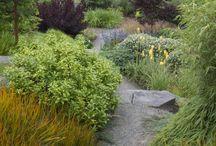 Dingen over tuinieren die ik leuk vind / gardening