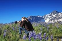 Summer Telluride Activities / http://www.visittelluride.com/things-to-do