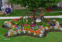 Garden favorites