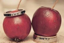 Fall Weddings/Florida Ideas / by Pamela Seal