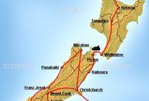 Kiwis land