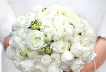Wedding Bouquets / by Jill Myers