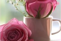 roże - filiżanka