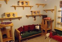 The Cat Room makeover