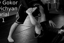 Grappling System / Ground fighting techniques includes Sambo, Judo, Jiu-Jitsu, Wrestling, and Kushti