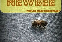 Beekeeping Fun / See our journey into beekeeping! #TaylorMadeHomestead