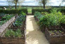 Zeleninové zahrady