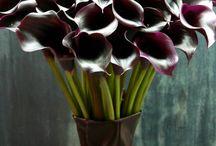 bouquet / 過去にオーダー頂いたブーケです。時期により花材等変わる場合があります。