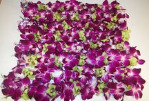 Our Lei Workshop / Here are a few pics of what people are ordering through Honolulu Lei Greetings or Hawaii Flower Lei (our lei shipping business).