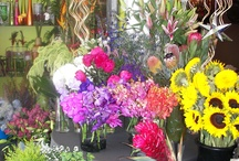 Flowers at Apple Blossoms Tampa / A glimpse into the cooler at our shop.  www.appleblossomstampa.com
