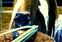 roping/barrels