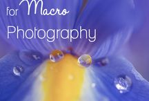 Photography | Macro Picture Tips