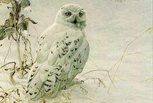 Wild life art: Robert Bateman-Birds / Wild life art